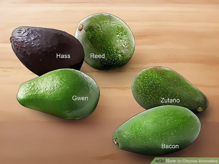 Авокадо хаас чем отличается от обычного плода, описание сорта и полезные свойства