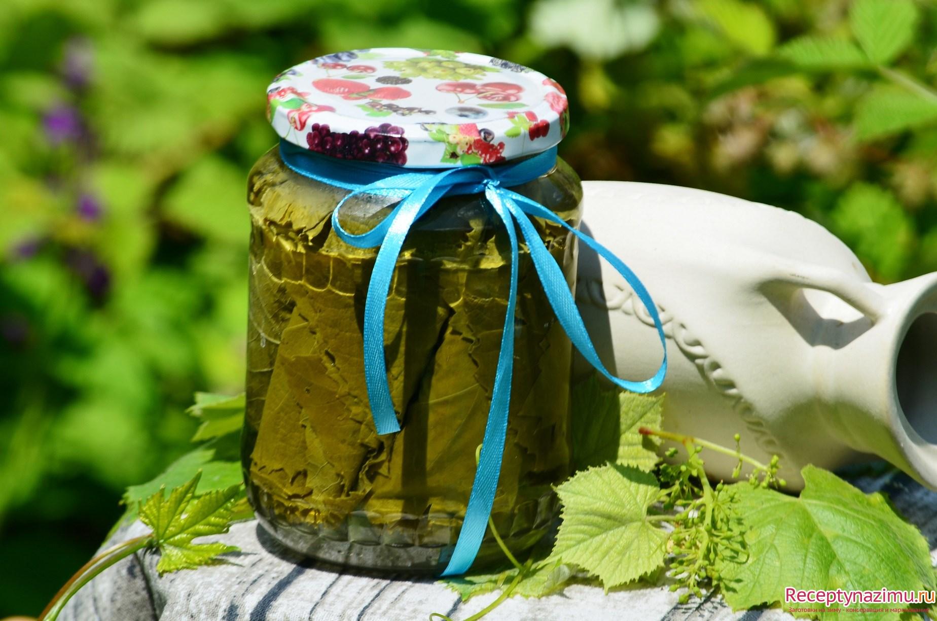 Виноградные листья для долмы: 14 советов и 1 классический рецепт