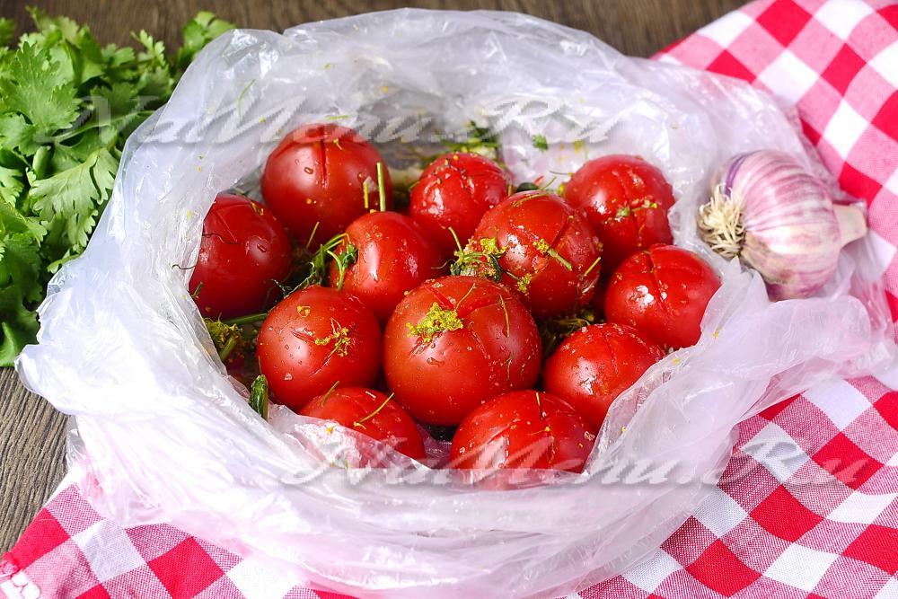 Малосольные помидоры с чесноком и зеленью быстрого приготовления: рецепты в пакете