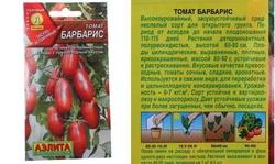 Томат барбарис: характеристика и описание гибридного сорта с фото