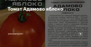 Томат сибирский скороспелый: отзывы, описание сорта, фото