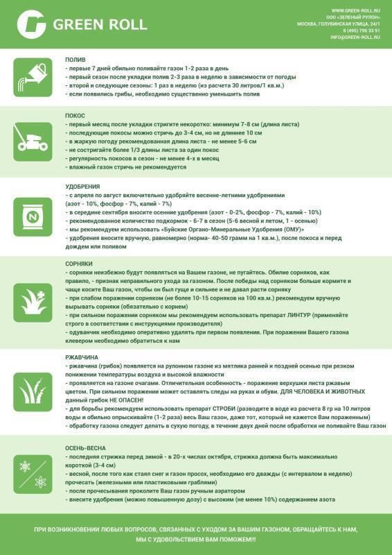 Как выбрать искусственный газон на дачу: советы и рекомендации экспертов