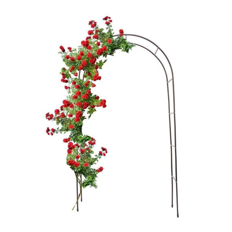 Какая нужна опора для выращивания плетистой розы