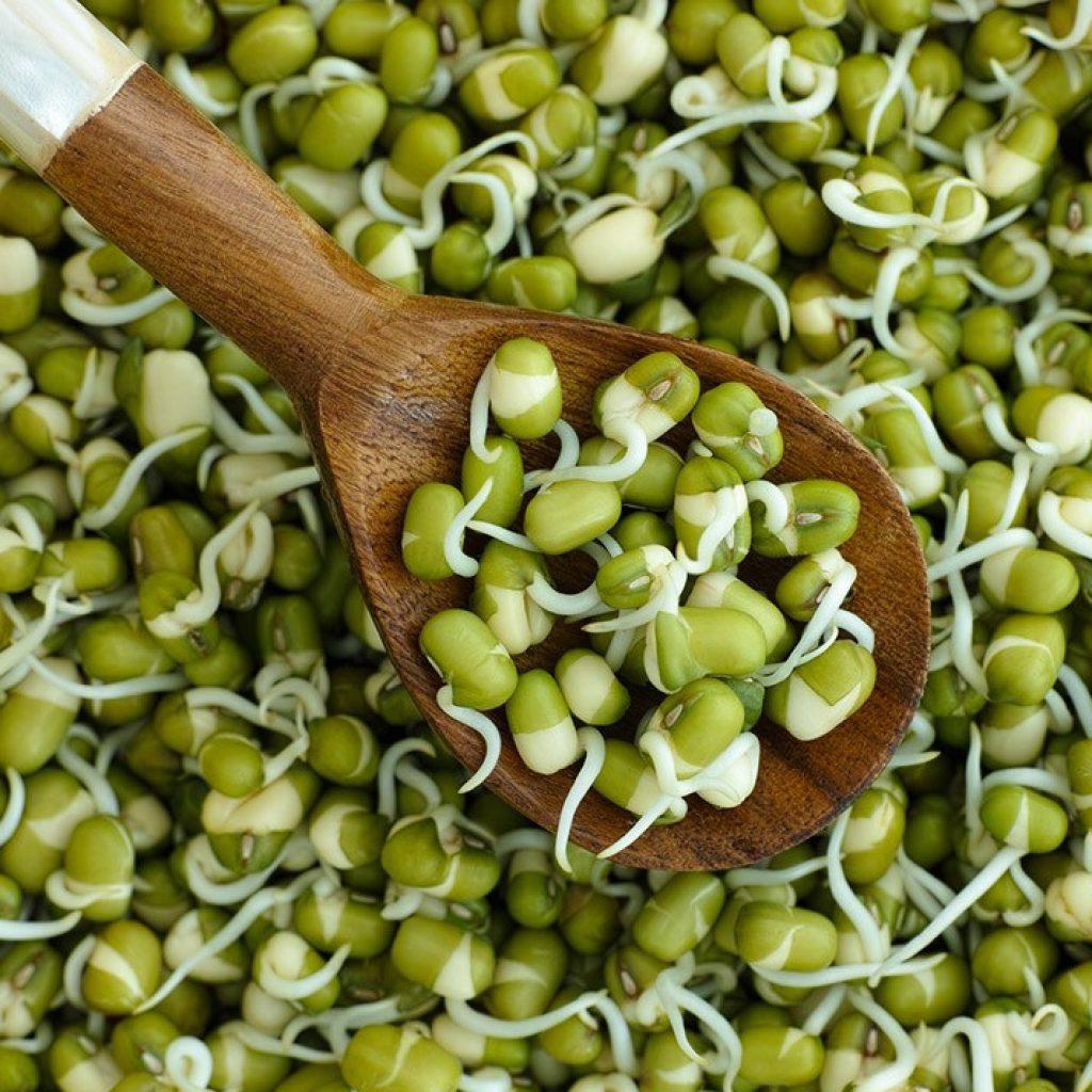 Маш (бобы мунг): польза и вред, как готовить | пища это лекарство