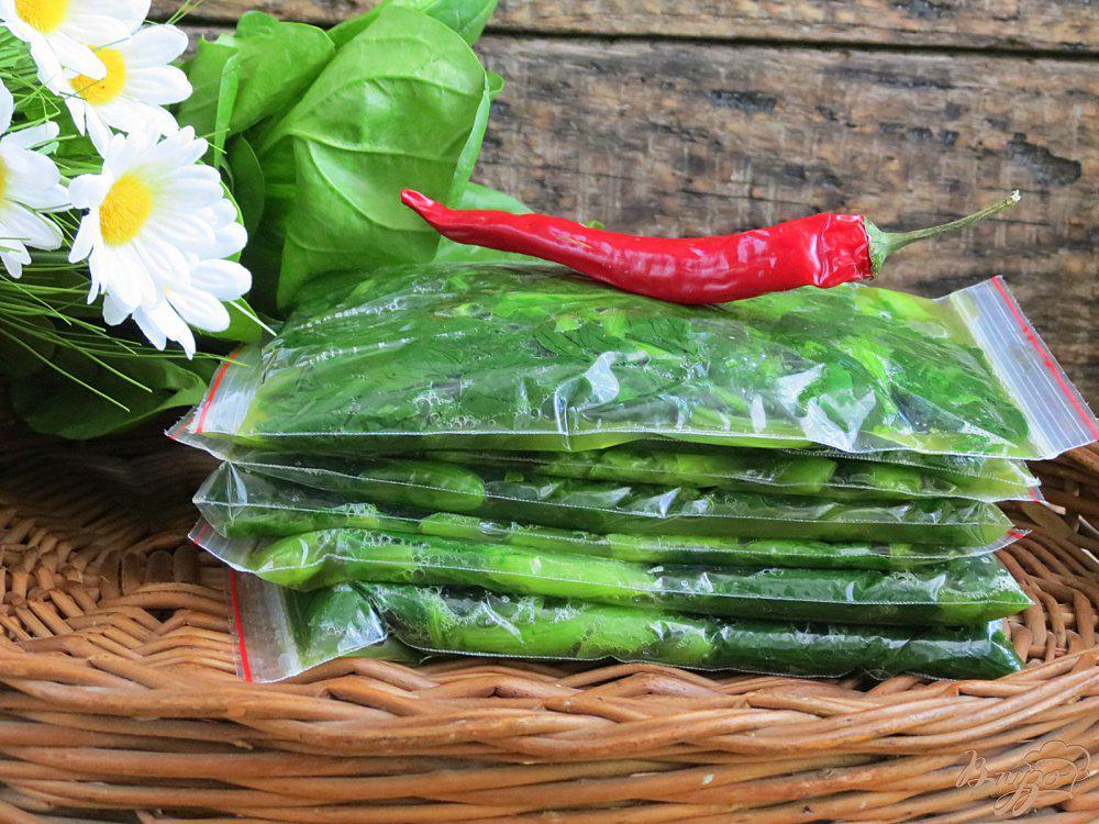 Можно ли замораживать шпинат на зиму: методы, советы