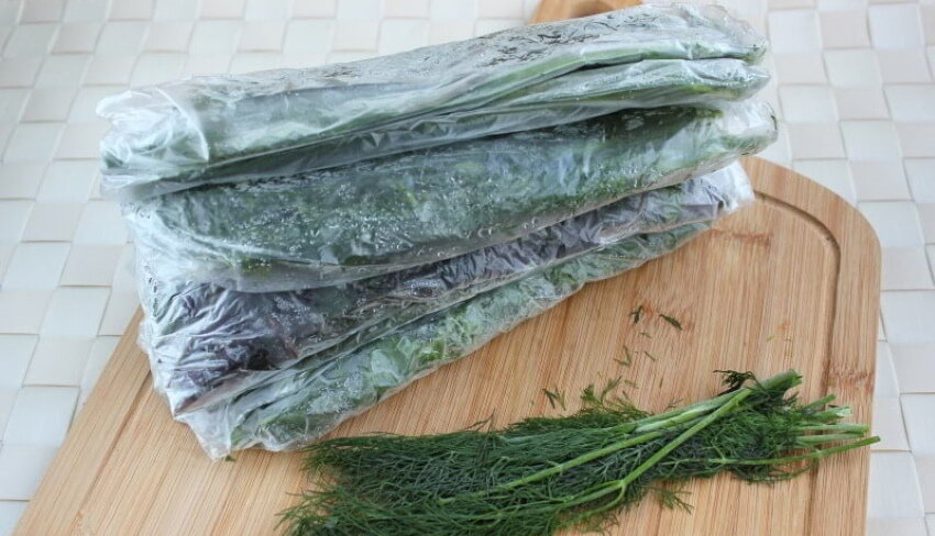 Как хранить петрушку в домашних условиях в холодильнике и при комнатной температуре: как заготовить зелень на зиму, чтобы она сберегла аромат и оставалась свежей? русский фермер