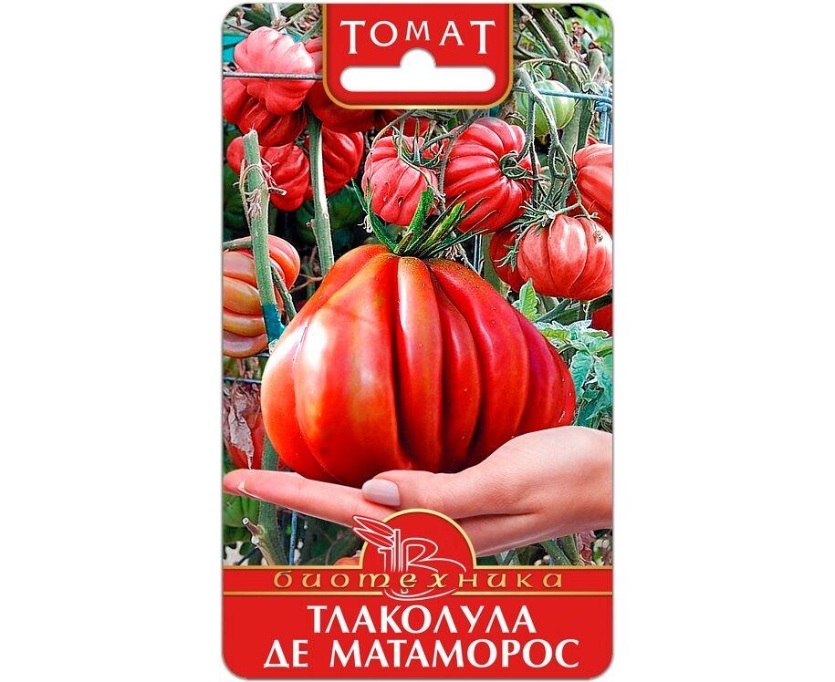 Как посадить и вырастить томат «тлаколула де матаморос»