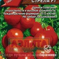 Стоит ли сажать гибридный томат «красная стрела f1»: характеристики, которые могут повлиять на ваш выбор