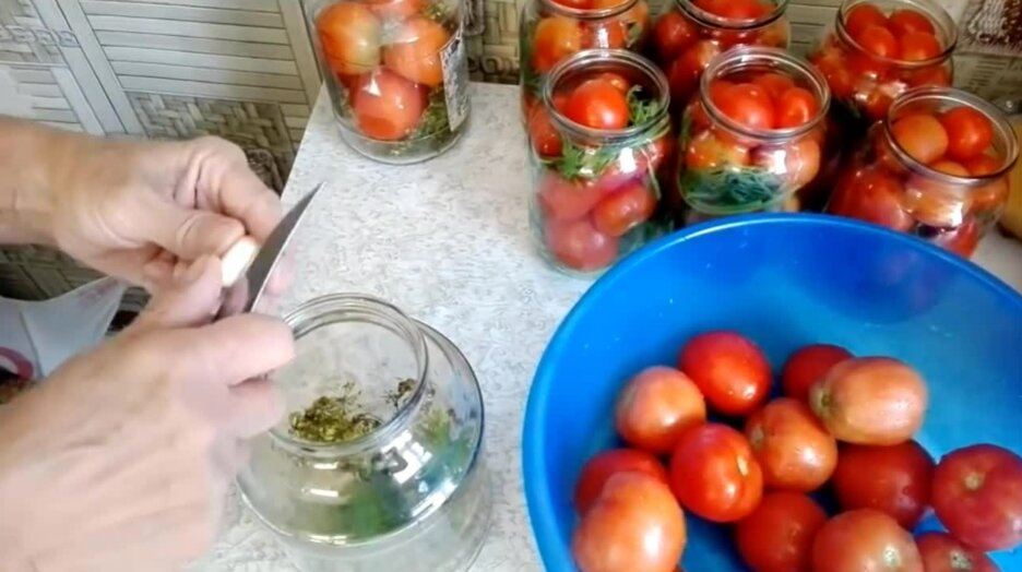 Маринованные помидоры – лучшие рецепты