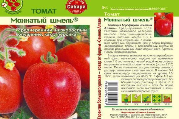 Описание томата Мохнатый шмель и агротехника культивирования сорта