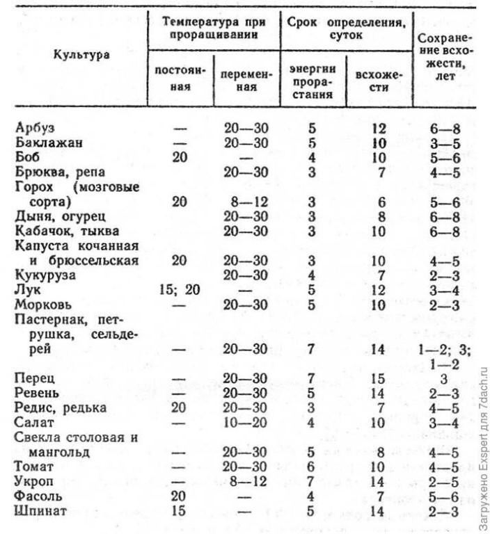 ✅ лучшие семена томатов для открытого грунта, какие бывают, как проверить на всхожесть - tehnomir32.ru