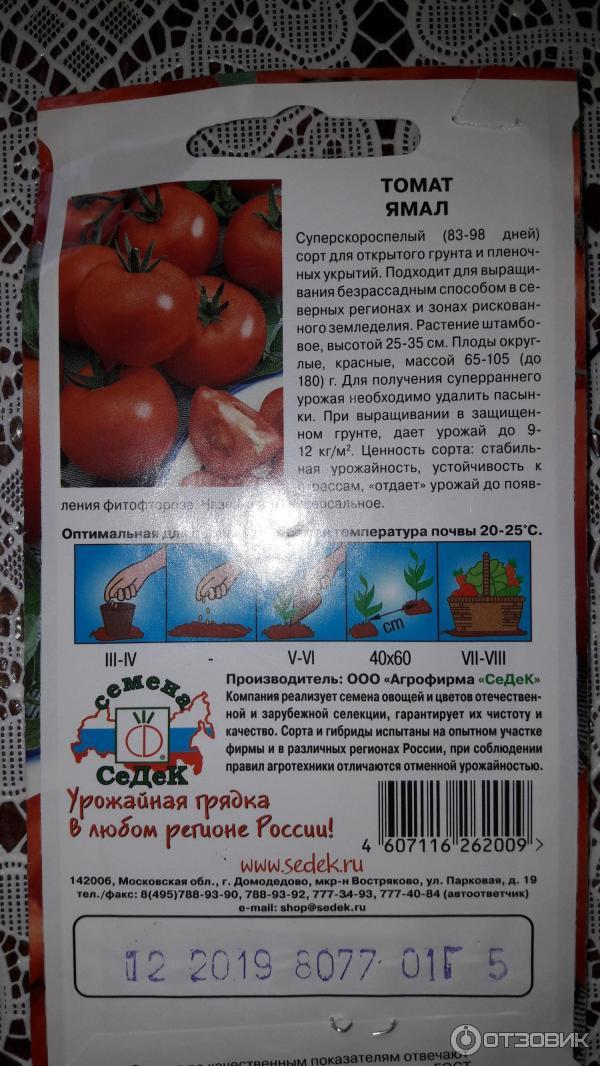 Томат ирина: топ отзывы, правила выращивания, описание, фото