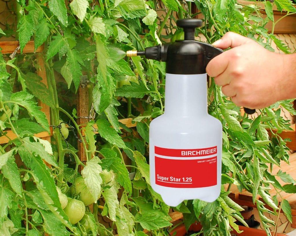 Йод для растений - применение для подкормки и защиты. как использовать для комнатных цветов и огородных культур