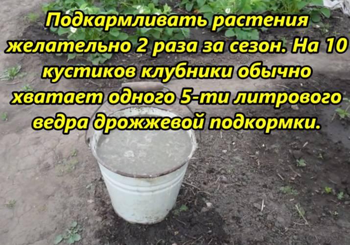 Зола как удобрение: когда вносить осенью или весной, применение - почва.нет