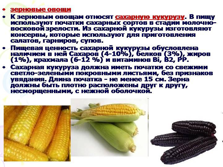 ✅ кукуруза злак. кукуруза: овощ или фрукт, характеристика, происхождение и строение - cvetochki-ulyanovsk.ru