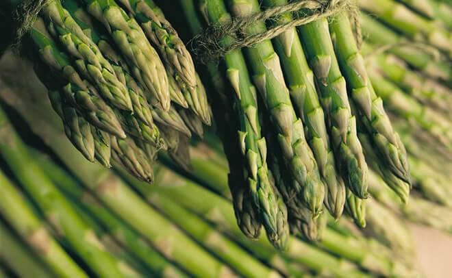 Выращивание спаржевой фасоли: описание, сорта, посадка и уход в открытом грунте
