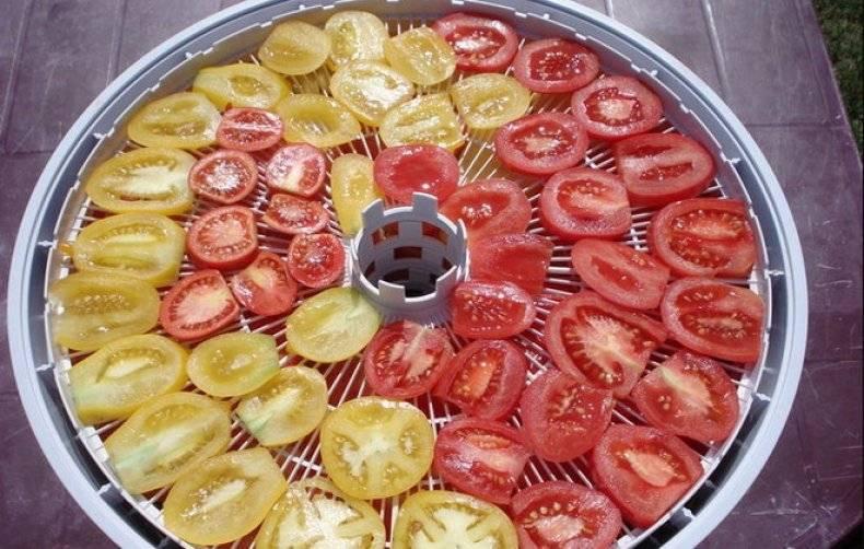 Как вялить томаты в электросушилке