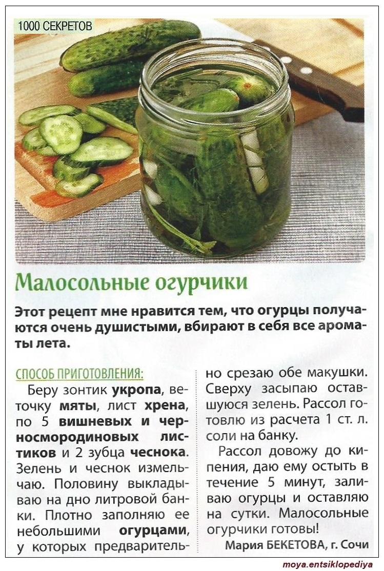 Эстрагон (тархун) для засолки огурцов: простой рецепт на зиму с фото и видео