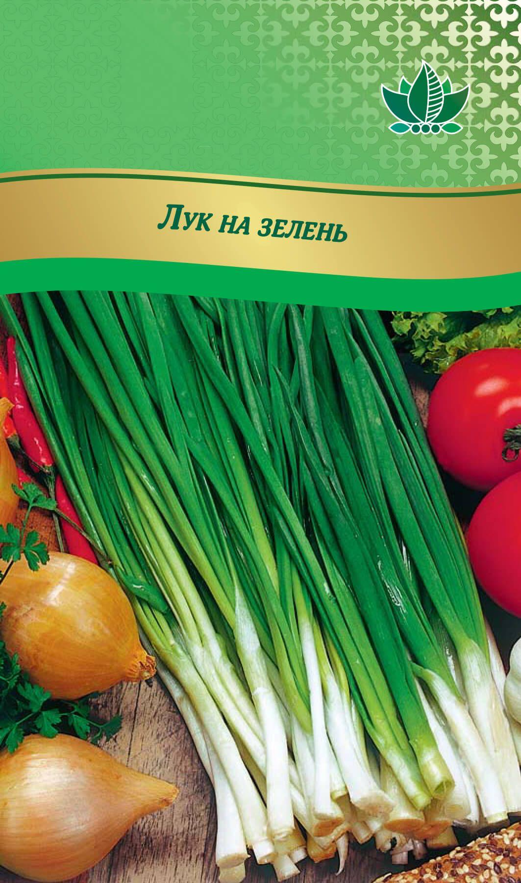 Как выбрать сорта лука из 220 огородных видов и создать аллярий – советы «зеленой грядки»! — agroxxi
