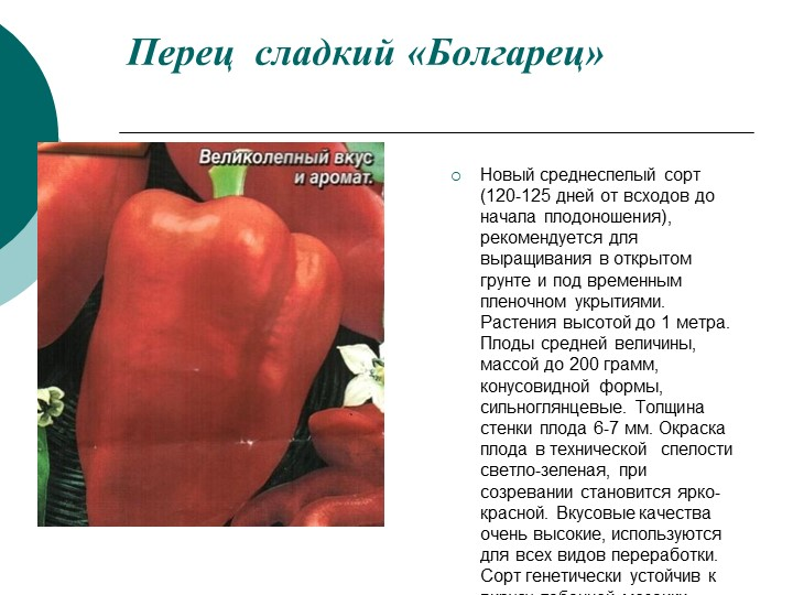 Перец атлант f1: описание урожайного сорта и особенности его выращивания