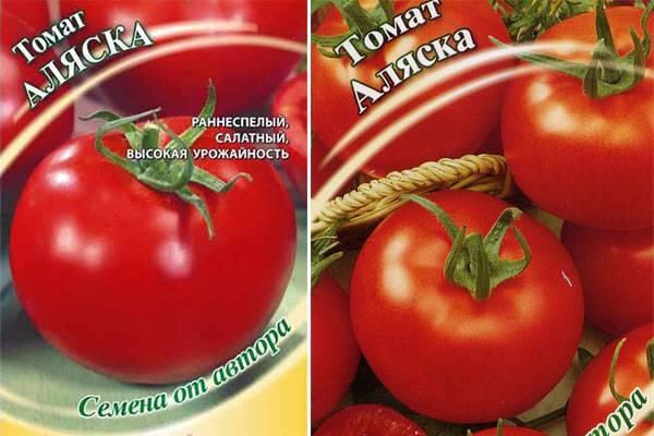 Томат аляска характеристика и описание сорта урожайность с фото