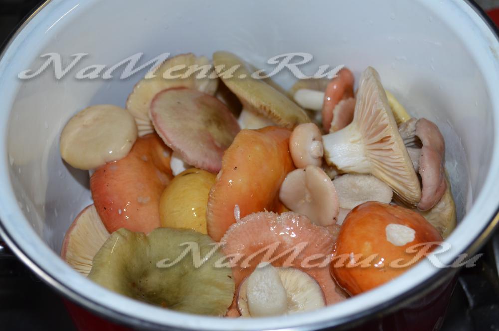 Как солить сыроежки на зиму холодным и горячим способом рецепты засолки грибов сыроежек