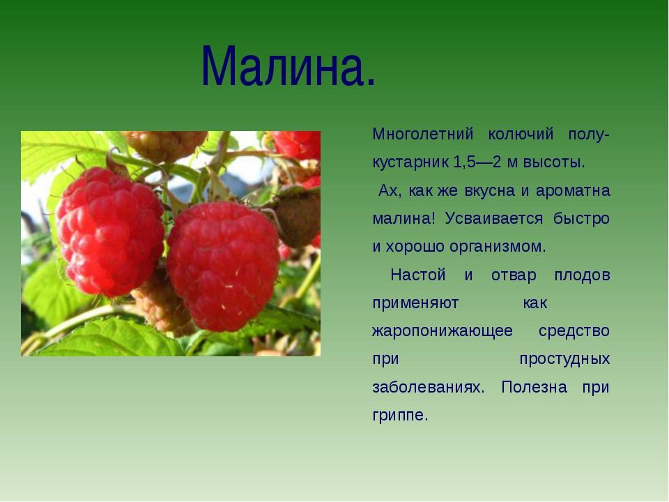 Красная малина и черная малина: в чем разница?   пища это лекарство