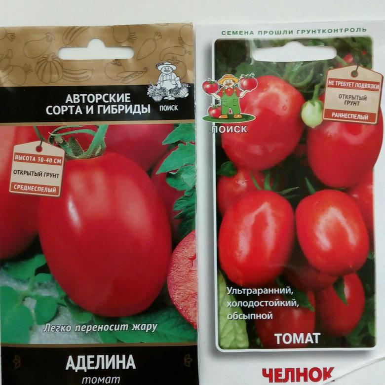 Томат аделина: описание сорта, отзывы, фото | tomatland.ru