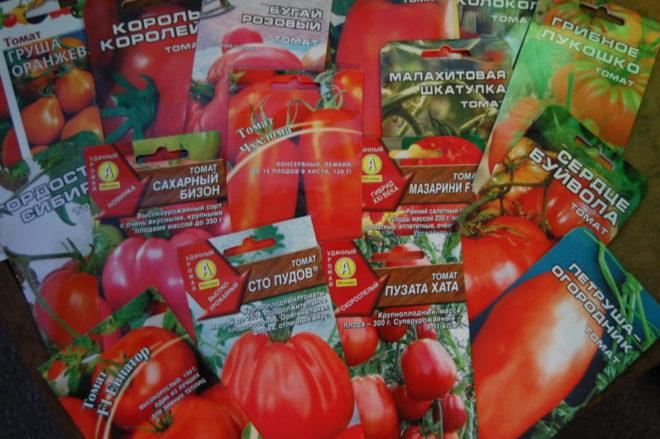 Семена томатов и перцев от валентины редько