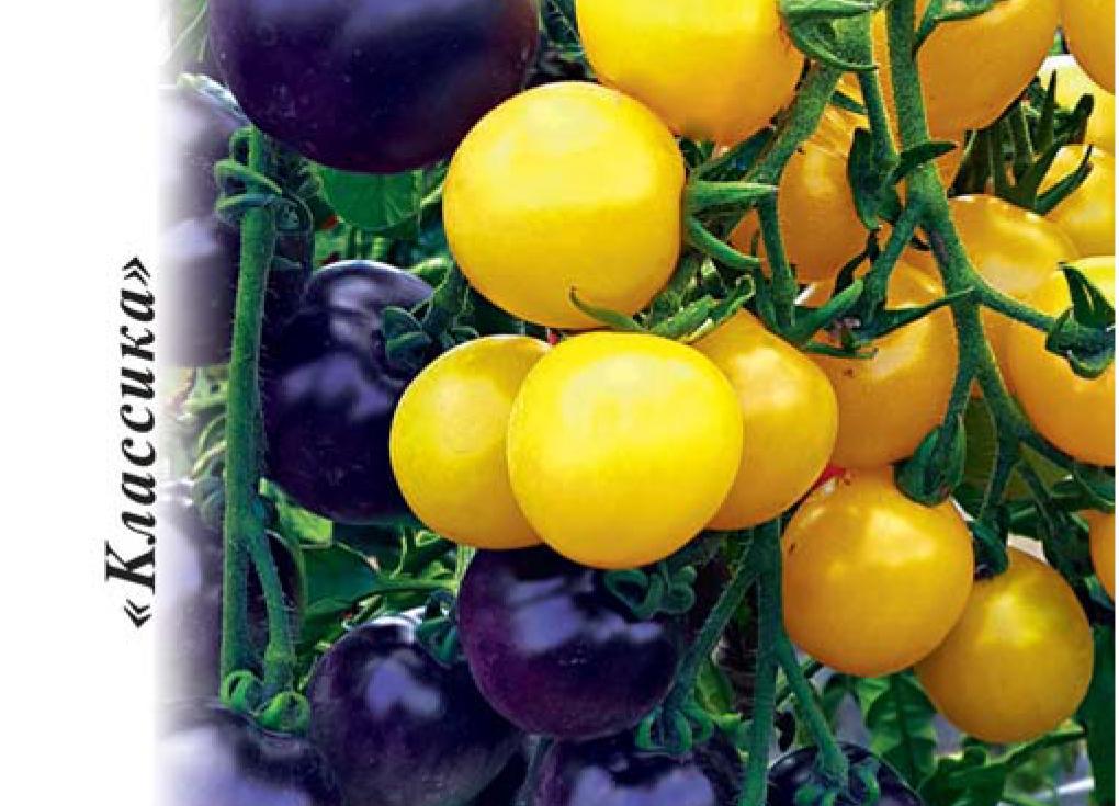 10 лучших сортов томатов черри — рейтинг 2020 года (топ 10)