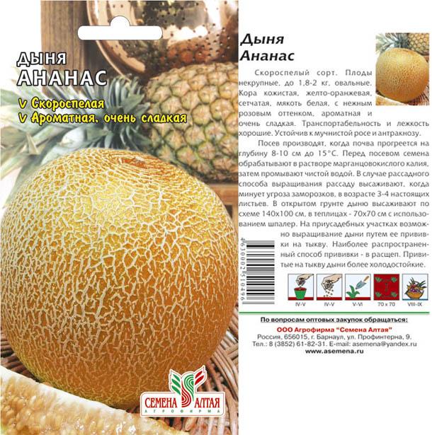 Выращивание дыни и уход за ней, в том числе в средней полосе россии, беларуси, подмосковье, на урале, в крыму и в других регионах, отзывы
