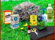Борьба с сорняками на огороде: эффективные способы и средства уничтожения