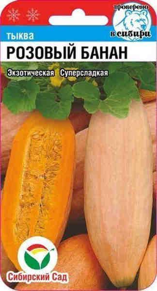 Самые сладкие сорта тыквы 2019-2020. сорта тыкв с различным вкусом