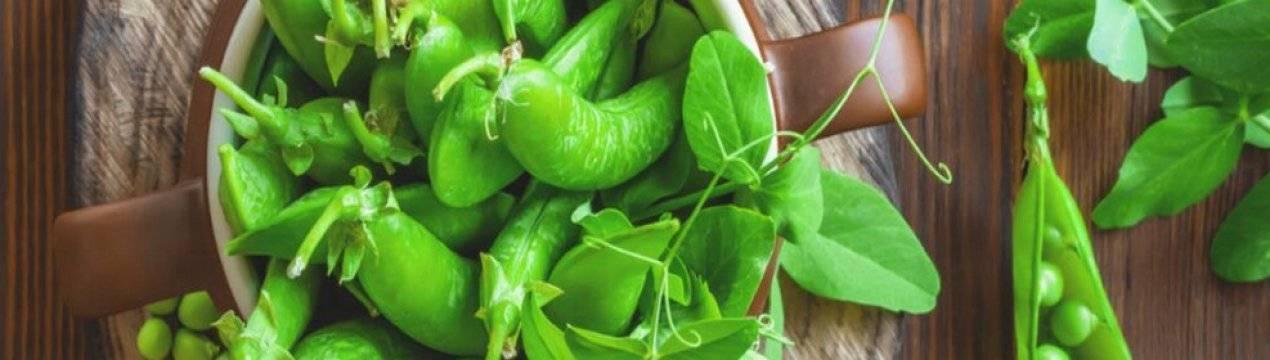 Полезные свойства и вред зеленого гороха для здоровья организма - всё про сады