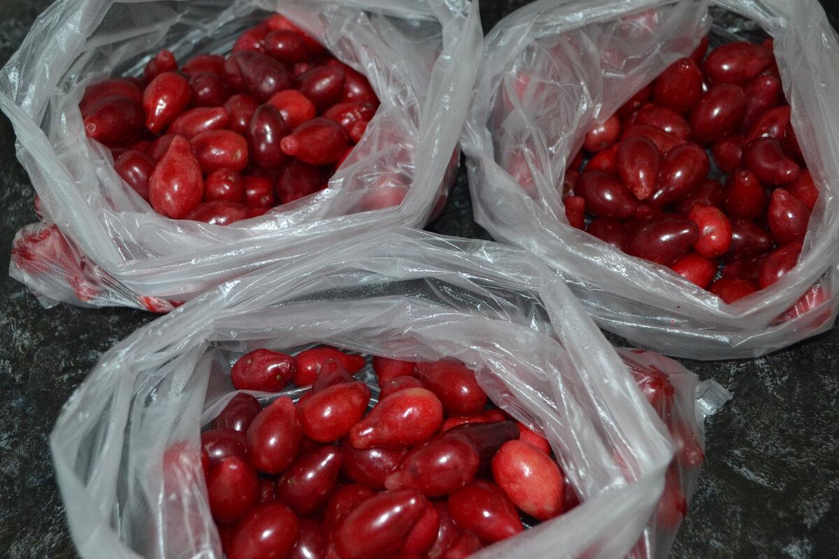 Как хранить кизил. как правильно заморозить кизил в домашних условиях на зиму и можно ли. отвар из сушеных ягод