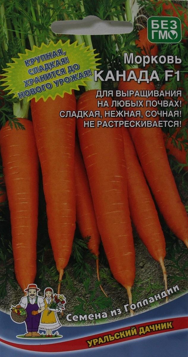 """Морковь """"канада f1"""": описание, отзывы, фото"""