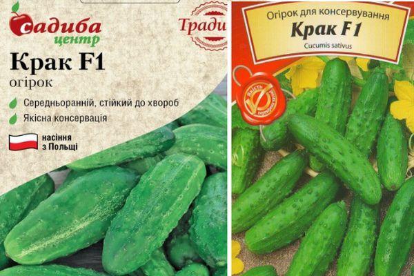 Описание сортов огурцов польской селекции, их выращивание и уход
