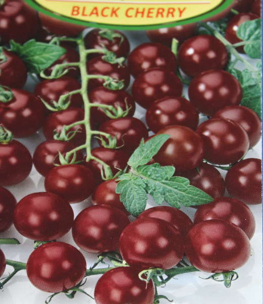 Томат черринано: описание и способы выращивания с фото