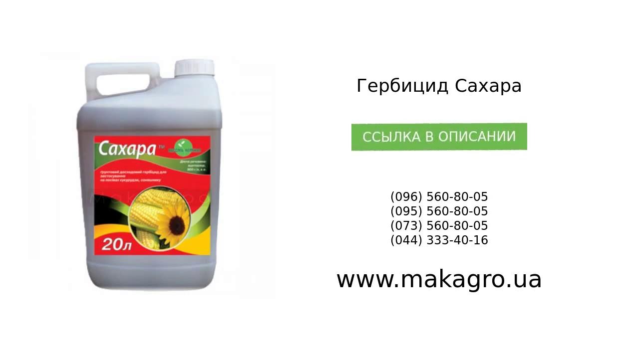 Гербициды от сорняков сплошного действия: виды гербицидов, эффективные средства, применение
