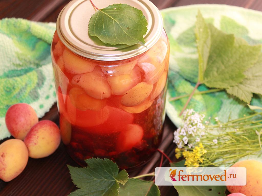 Компот из черной смородины на зиму: топ-8 рецептов, кулинарные советы