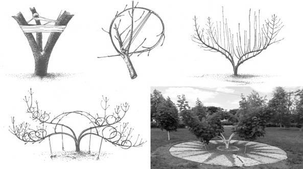 Поэтапное создание дерева из проволоки собственными руками