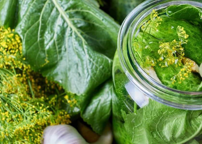 Огурцы в капустных листьях на зиму 2 пошаговых рецепта маринования