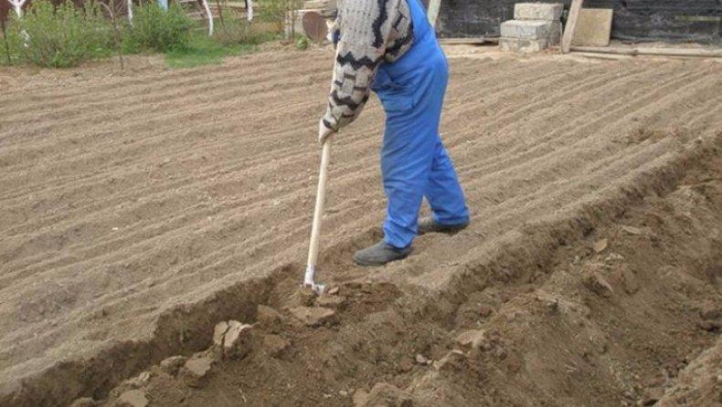 За и против перекапывания огорода осенью