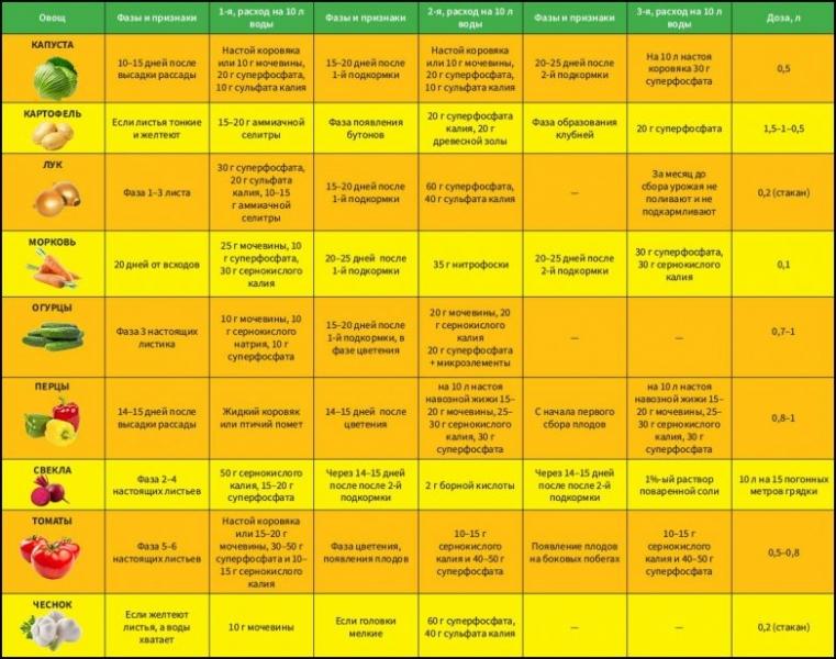 Чем подкормить ирисы весной: советы и рекомендации цветоводов