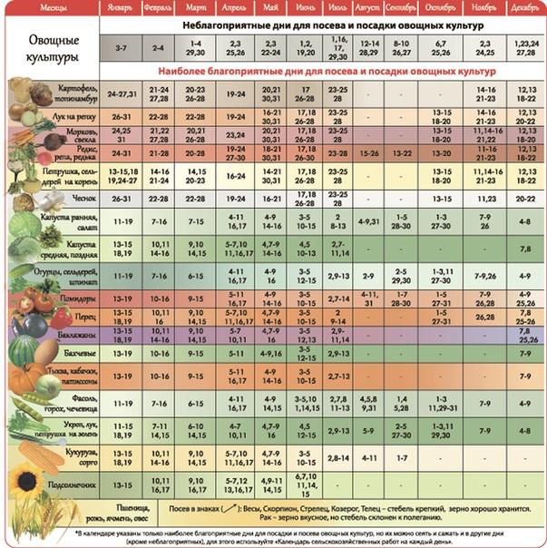 Лунный посевной календарь 2021: таблица посадок садовода и огородника