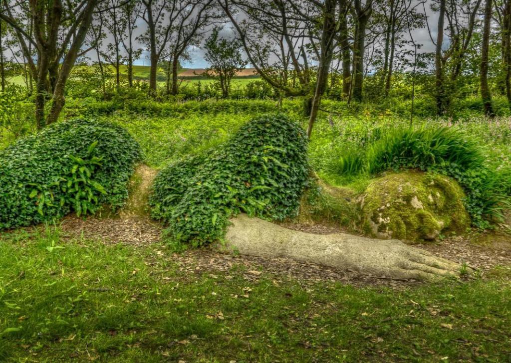 Затерянные сады хелигана | туристический справочник