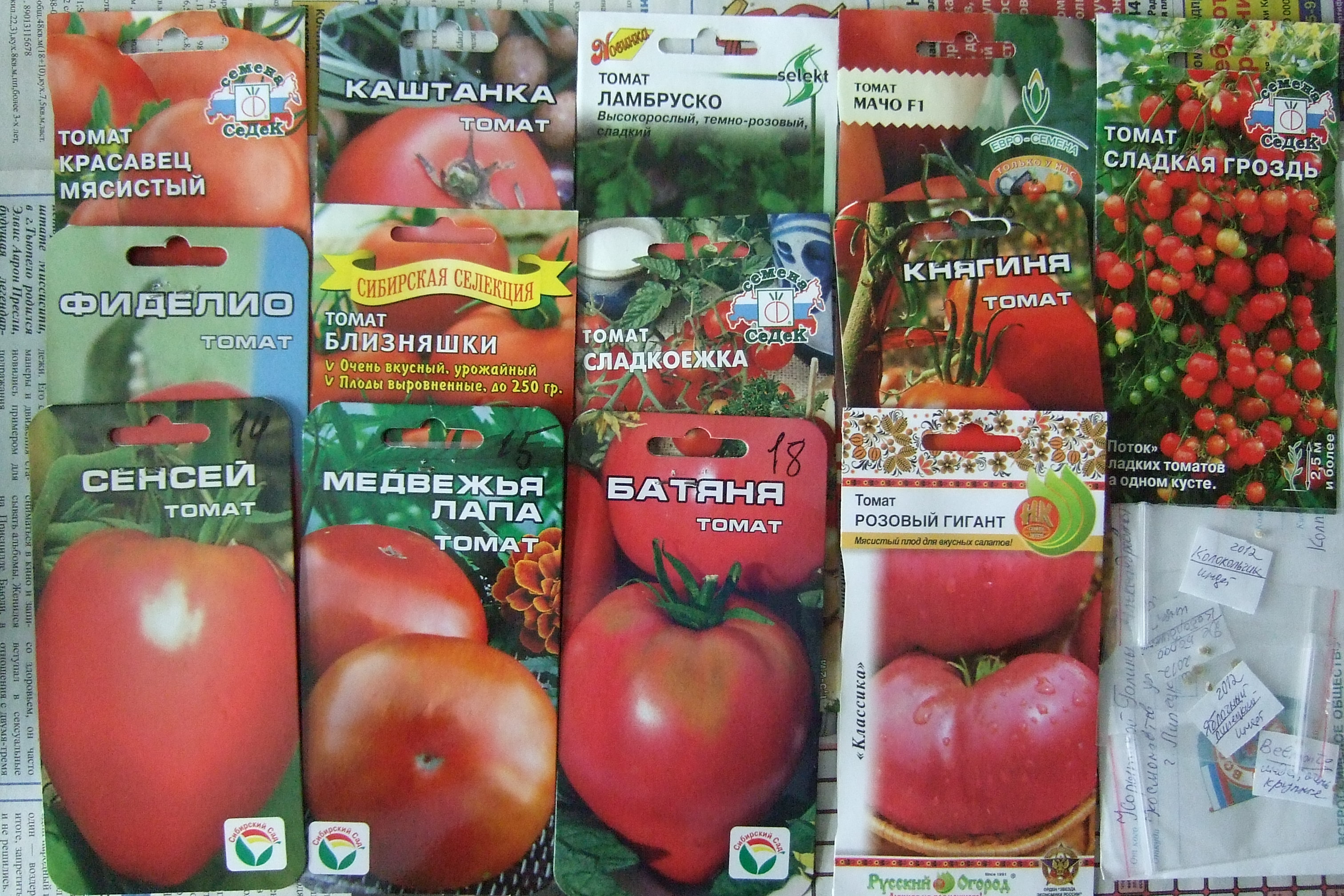 Характеристика и описание сорта томата сенсей, его урожайность – дачные дела