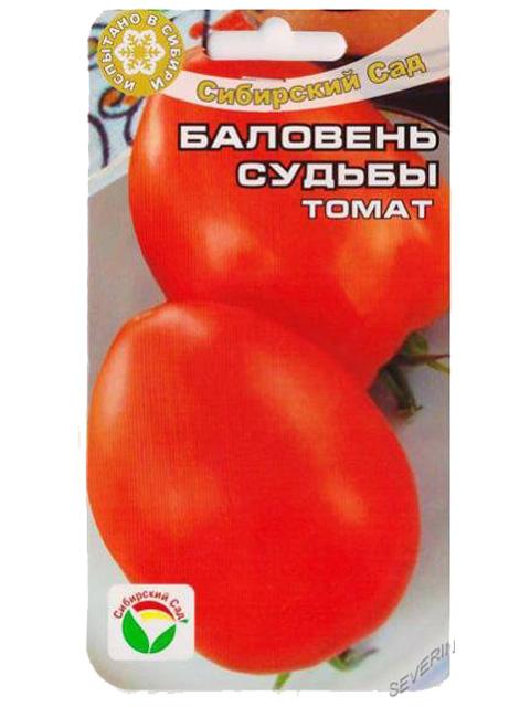 Описание сорта томата баловень судьбы и правила выращивания - всё про сады