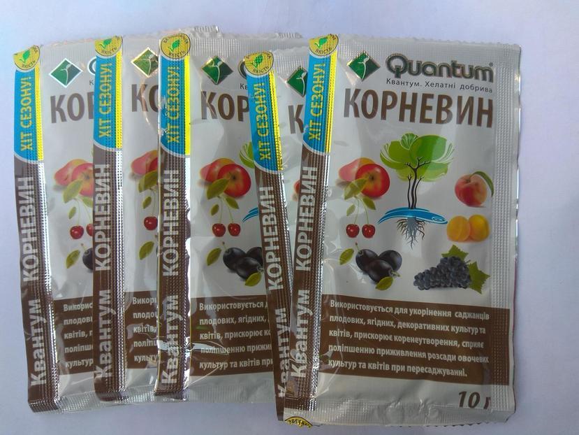 Инструкция по применению «Корневина» для томатов, как использовать при пикировке