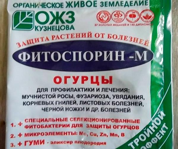 Фитоспорин для огурцов: правила использования препарата